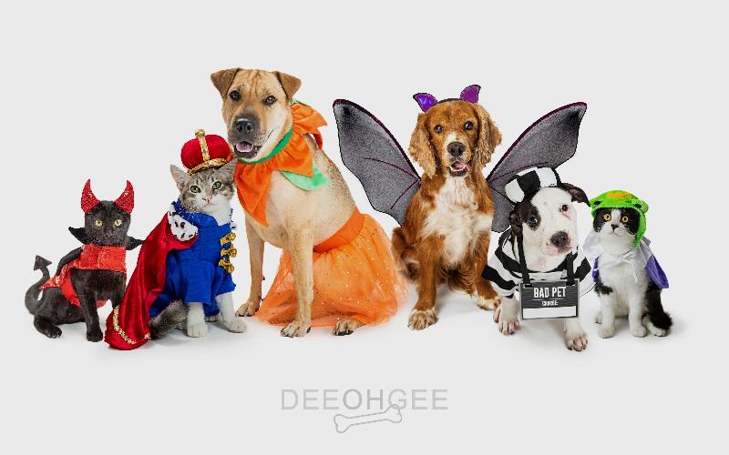 DeeOhGee Halloween Costumes Blog Image